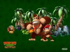 Donkey Kong Country Returns wallpaper 4