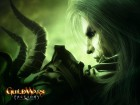 Guild Wars Factions wallpaper 7