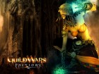 Guild Wars Factions wallpaper 9