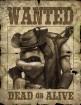 Oddworld : La Fureur de l'Étranger wallpaper 14