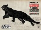 Red Dead Redemption wallpaper 43