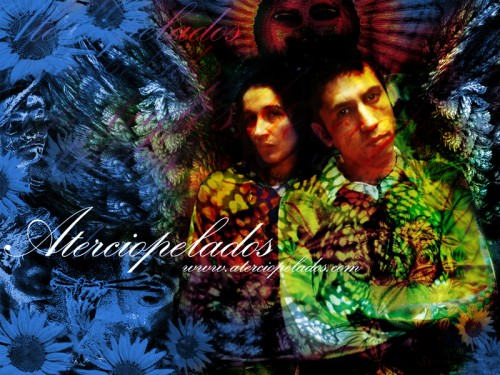Aterciopelados wallpaper 1