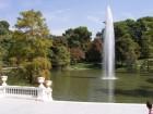 Jet d'eau à proximité du Palais de Cristal dans le parc du Retiro