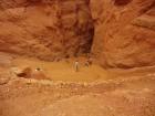 Chemin qui permet de descendre dans Bryce Canyon