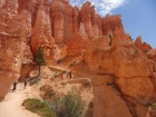 Chemin de randonnée dans l'amphithéâtre naturel de Bryce Canyon