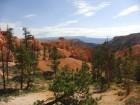 Hoodoos dans Bryce Canyon
