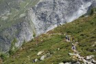 Des randonneurs à proximité du glacier du Tour